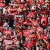 """Benfica à viu-se """"aflito"""" para afastar o Trofense na Taça de Portugal"""