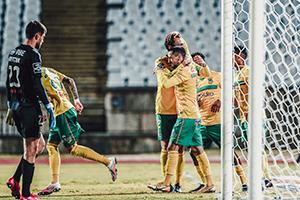 JOSÉ SENA GOULÃO / Liga Portugal